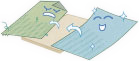 表替えイメージ図
